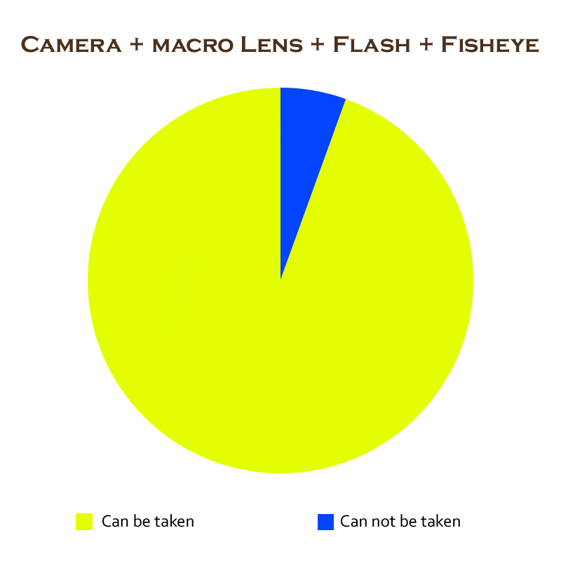 camera-macro-flash-fisheye