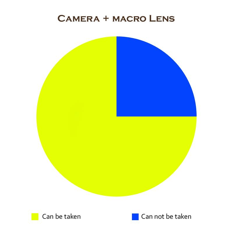 camera-macro